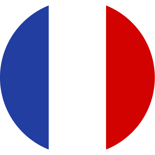 French flag icon - Lire la version française de l'article